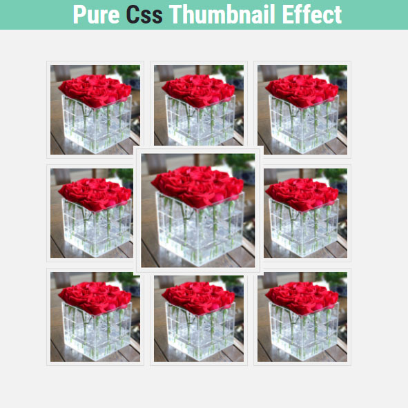 Pure Css Thumbnail Effect