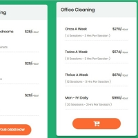 A pricing table with more lines and details with shipping button effect