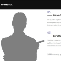 Promodise is a free template for designing a professional online servives website.